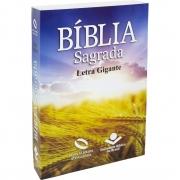 Bíblia Sagrada Evangélica Letra Gigante Linguagem Fácil Capa Brochura Trigo
