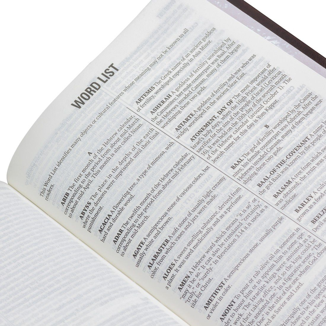Bíblia Bilíngue Português Inglês - Capa Luxo - NTLH
