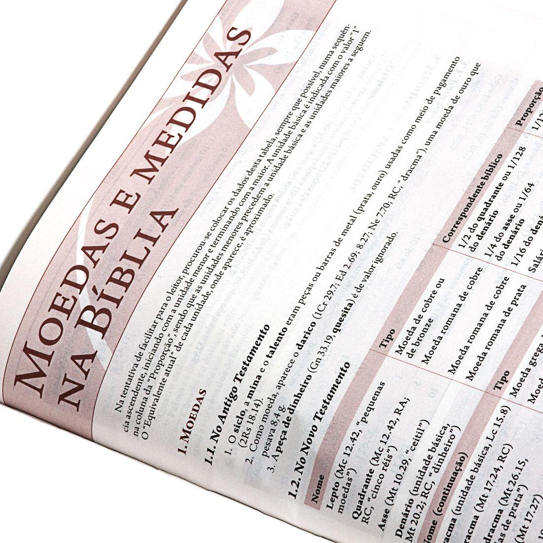 Bíblia Evangélica Feminina de Estudo RC + Bíblia Com Harpa Letra Gigante Capa Ramo Prata RC