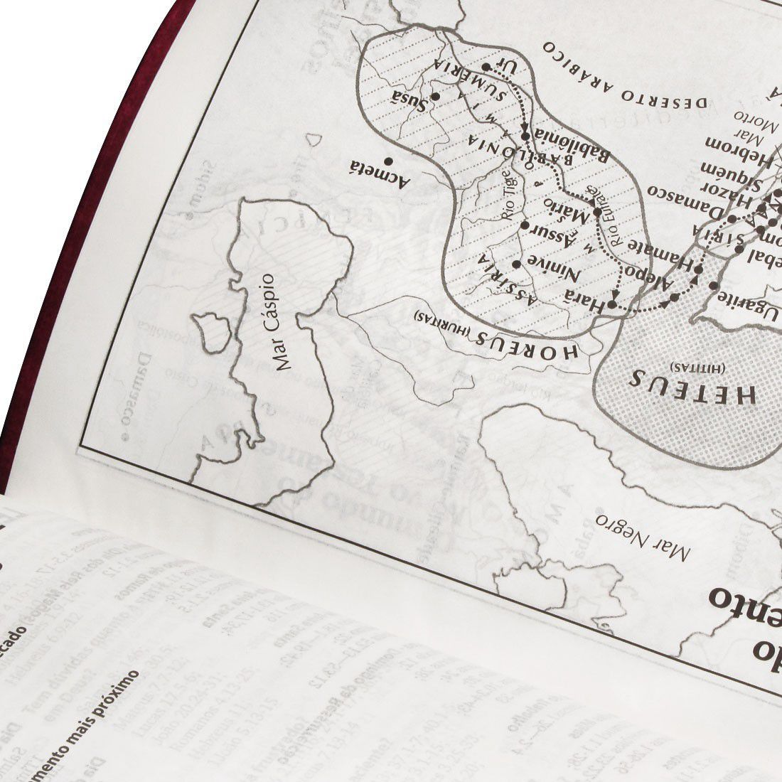 Bíblia Sagrada Letra Gigante - Capa Couro - Cor Púrpura Nobre Luxo