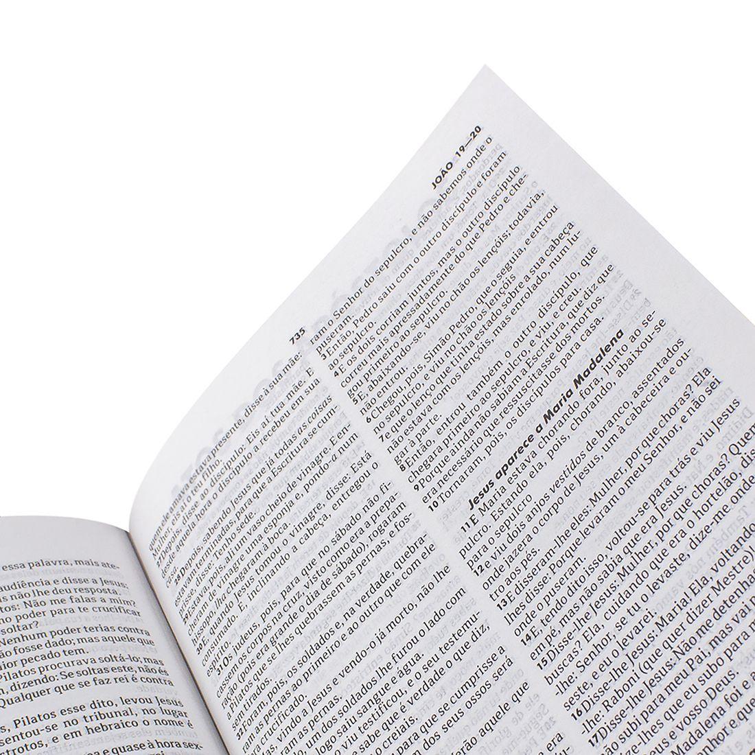 Bíblia Sagrada Evangélica Capa Dura Pássaro Edição Jovem RC
