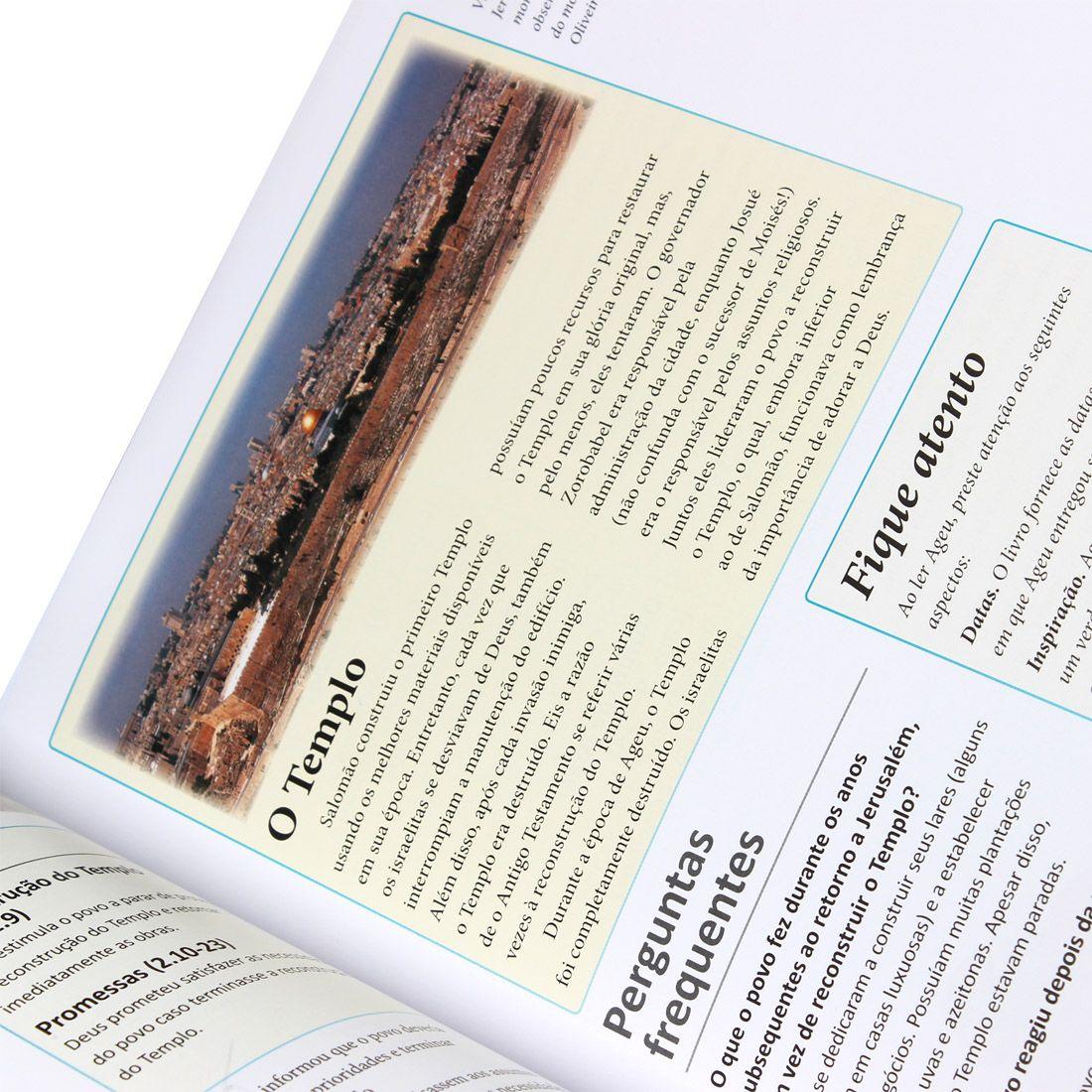 Manual Essencial da Bíblia - Sociedade Bíblica do Brasil