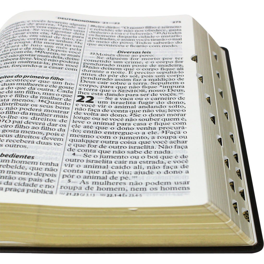 Bíblia SBB NTLH Letra ExtraGigante  - Livraria Betel