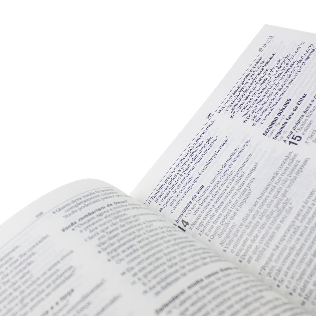 Bíblia Sagrada NAA Jovens (Leão)  - Livraria Betel