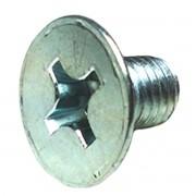 Parafuso da Dobradiça da Porta Kombi 6x10mm