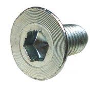 Parafuso da Dobradiça da Porta Kombi 8x18 mm