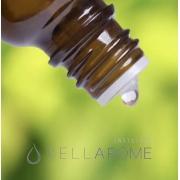 Curso: Segurança biológica na utilização de óleos essenciais: aperfeiçoamento em bases bioquímicas