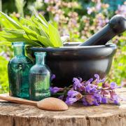 Curso Aromaterapia Sutil e Energética