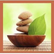 Mentoria de Aromaterapia para Terapeutas Holísticos