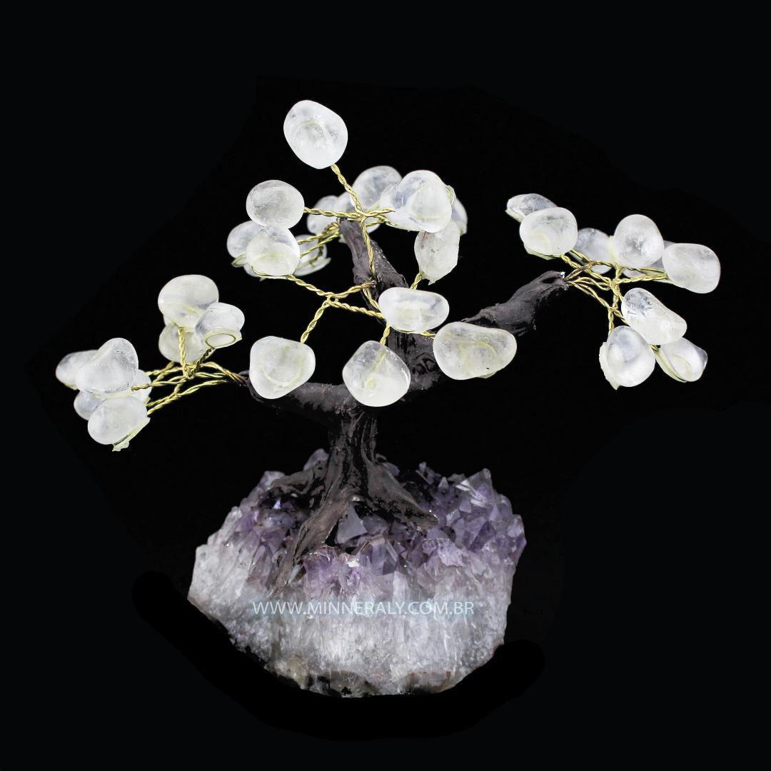 Árvore de Cristal in Natura #NN110