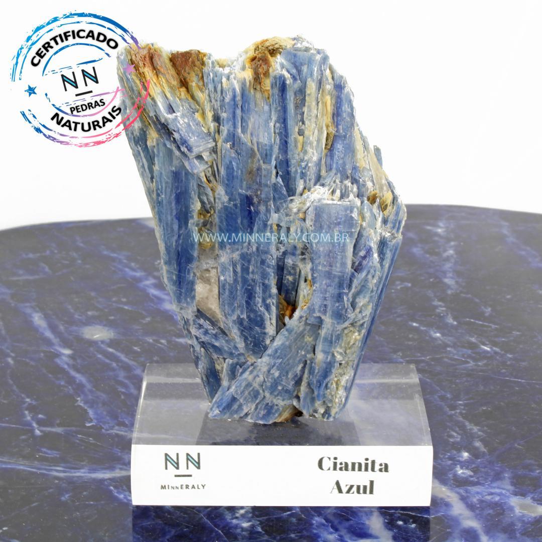 Cianita Azul (Espada do Arcanjo Miguel ou Distênio) in Natura Clear.Collection (0,720kg; 14,0cm) #NN111
