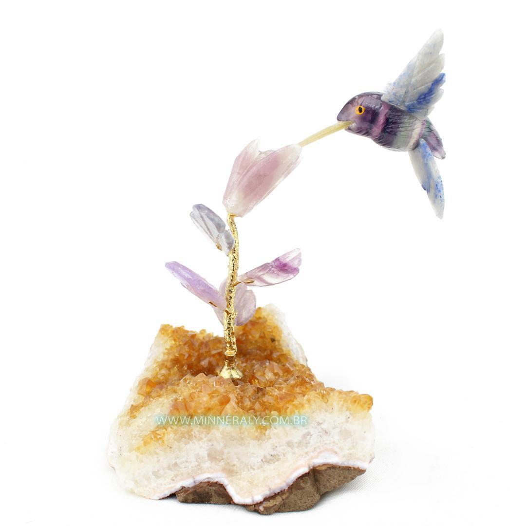 Beija Flor de Fluorita em Drusa de Citrino in Natura #NN121