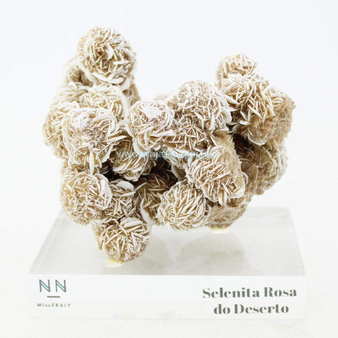 Selenita Rosa do Deserto in Natura Clear.Collection (0,575kg; 11,0cm) #NN119