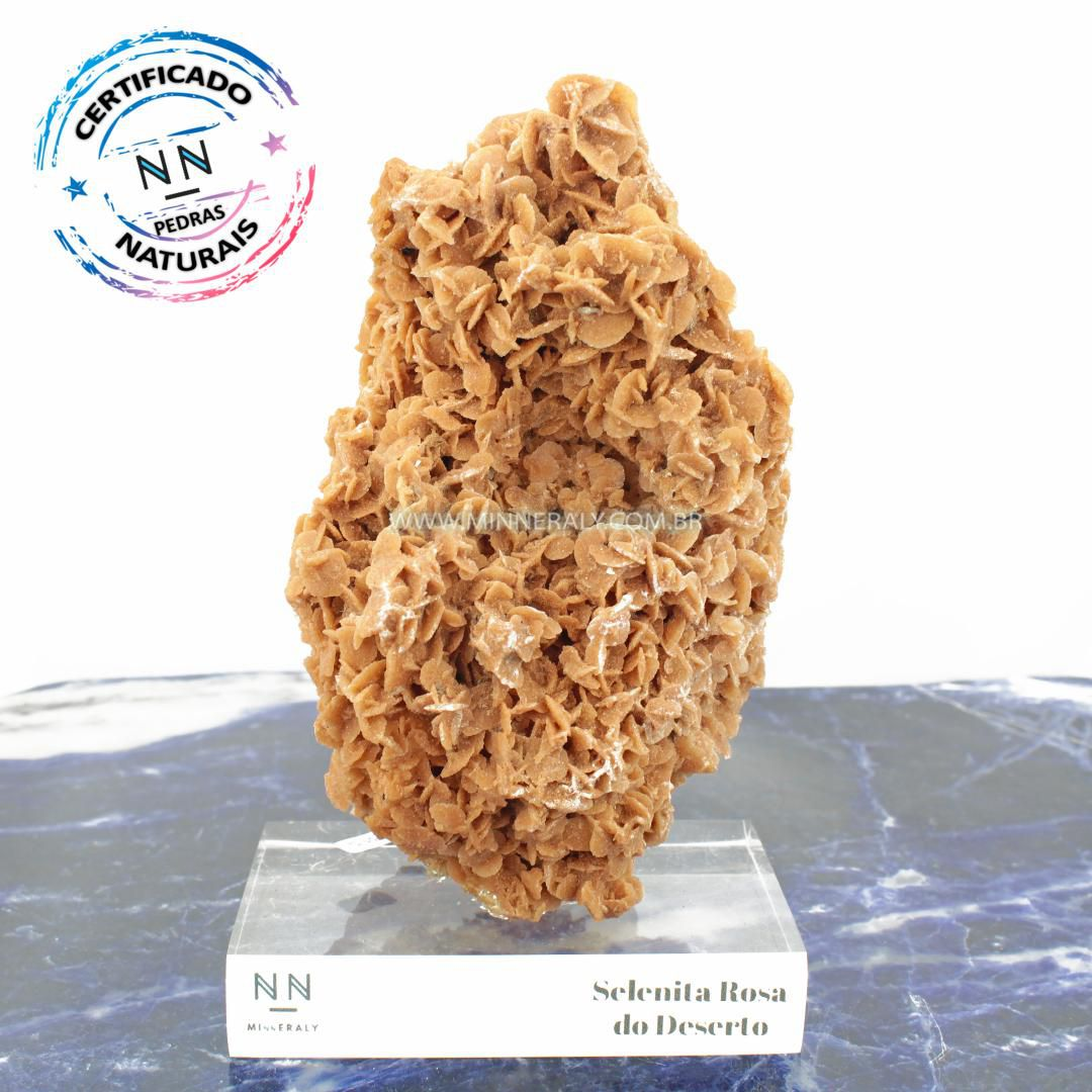 Selenita Rosa do Deserto in Natura Clear.Collection (1,360kg; 18,0cm) #NN118