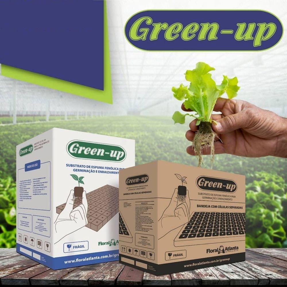 Espuma Fenolica Caixa com 15 placas Green Up Floral Atlanta  - ORQUIDEA GARDEN