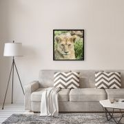 Fotografia Artistica Profissional Animais Leoa 65cmx65cm