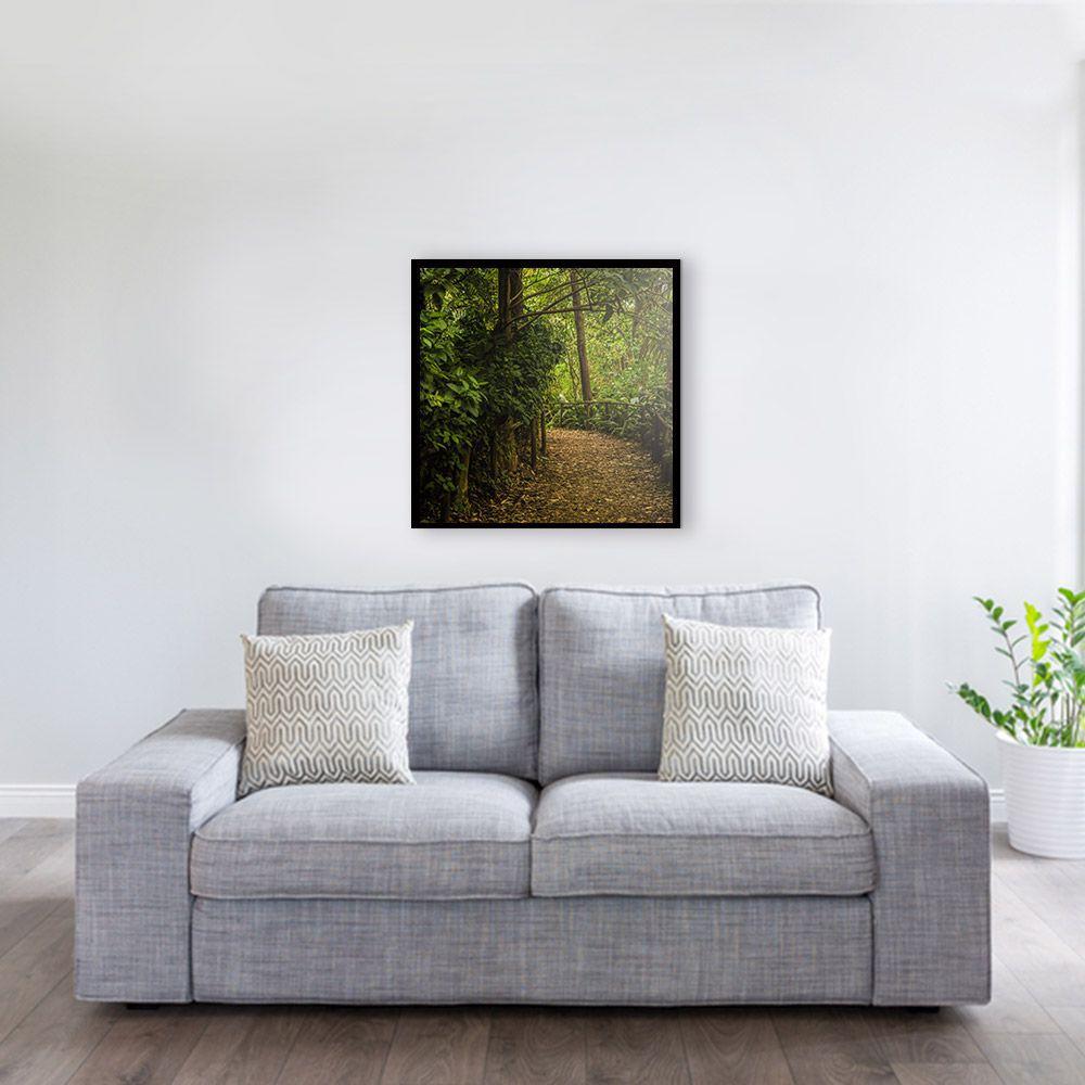 Fotografia Artistica Profissional Natureza Bosque 65cmx65cm