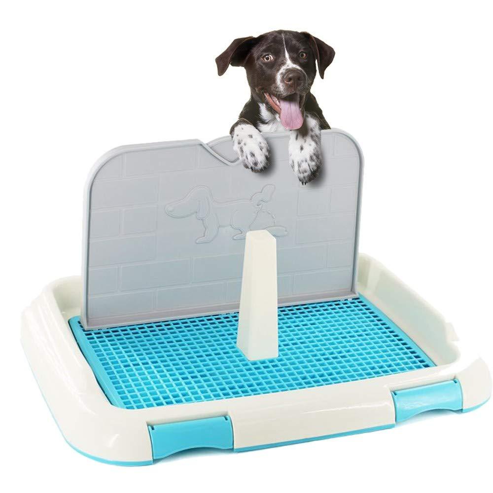 FRETE GRÁTIS comprando o Sanitario de Cachorro Higienico