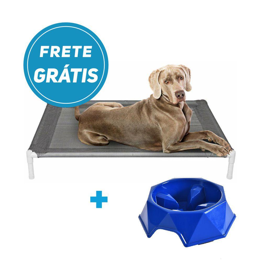 Kit Cama Pet Elevada e Comedouro Lento Azul com Frete Grátis