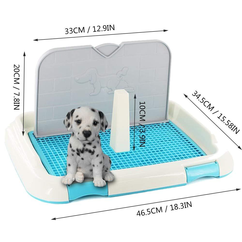 Sanitario de Cachorro Higienico