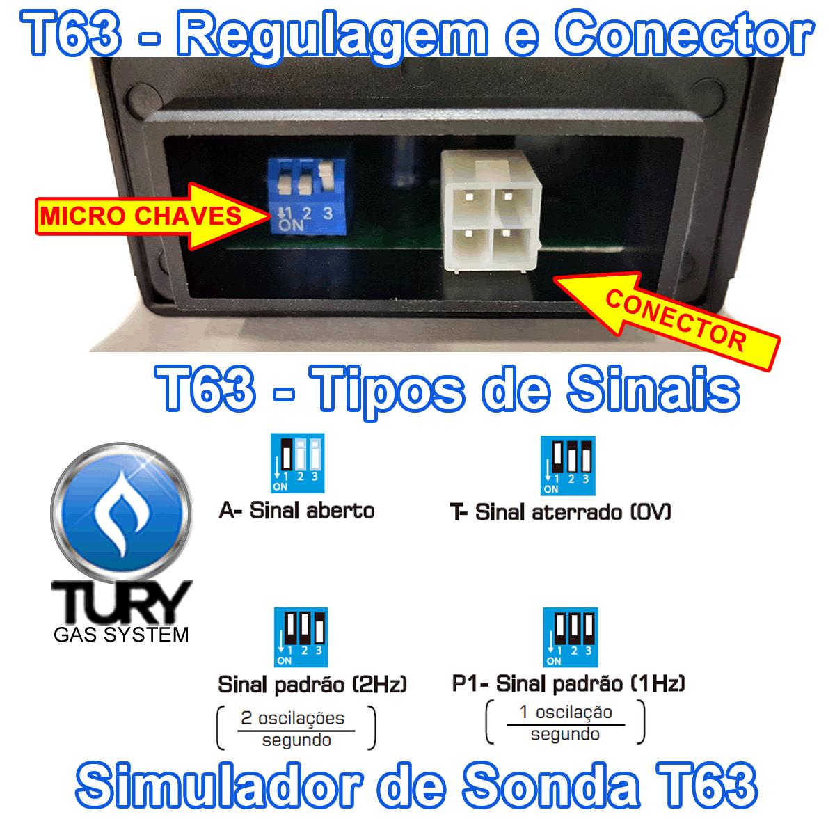 Chave Comutadora T1000A e Simulador de Sonda T63 TURY GAS