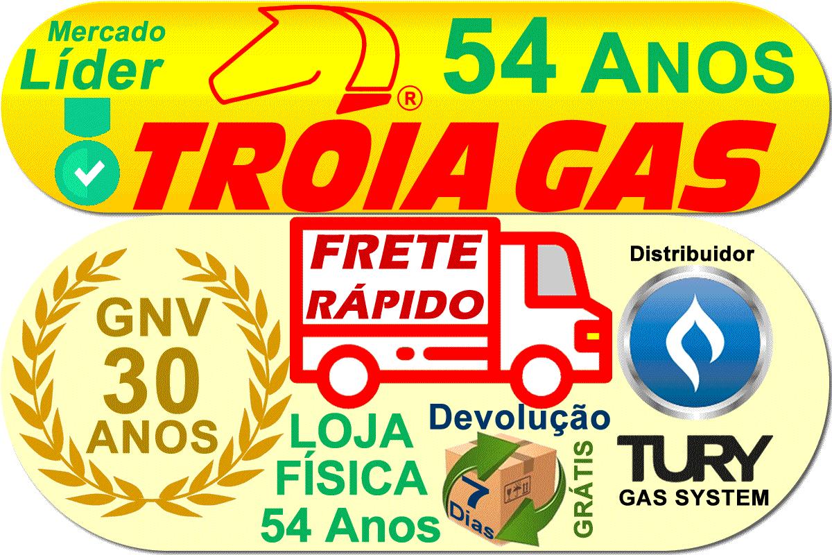 Variador T47 S Acelerador Eletrônico GNV Renault Plug & Play TURY GAS