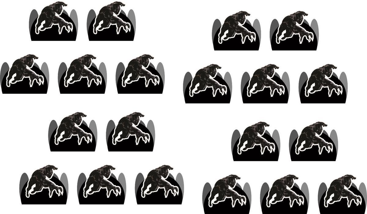 Kit Festa Pantera Negra 114 Peças (10 pessoas)