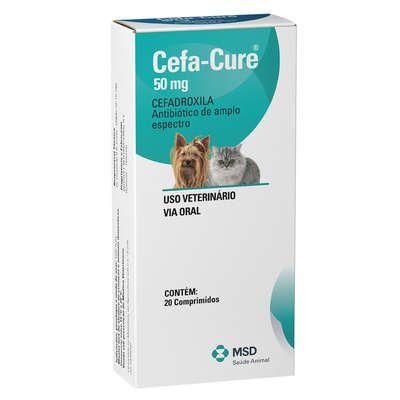 Antibiótico MSD Cefa Cure