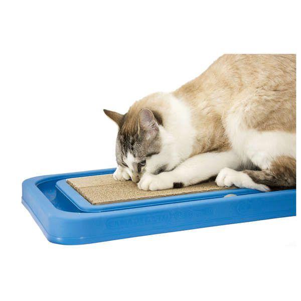 Cat Relax Furacão Pet