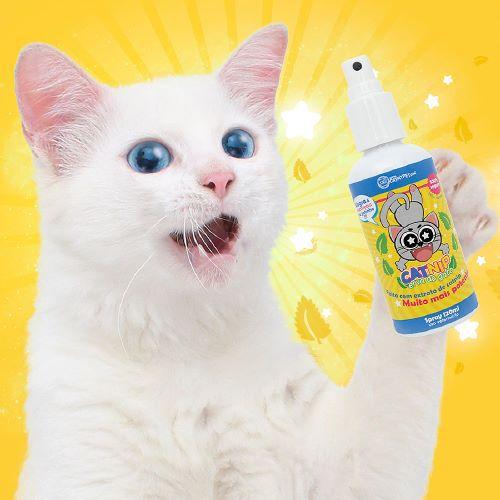Catnip CatMyPet Erva do Gato