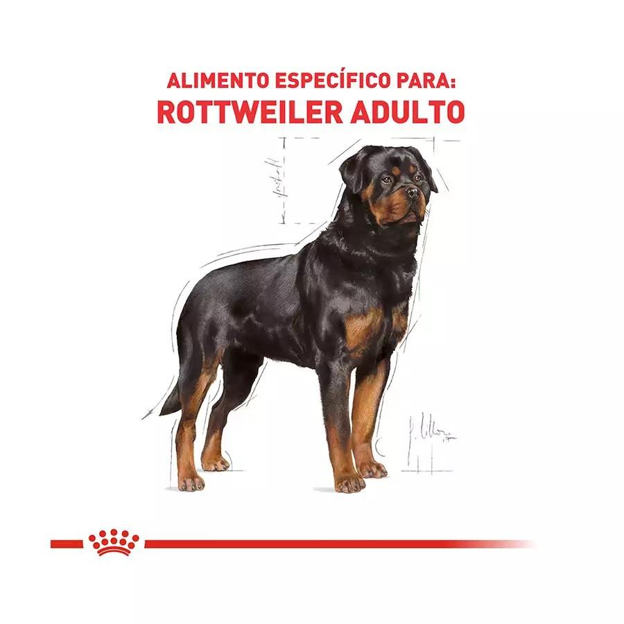 Ração Royal Canin para Cães Adultos da Raça Rottweiler - 12 Kg