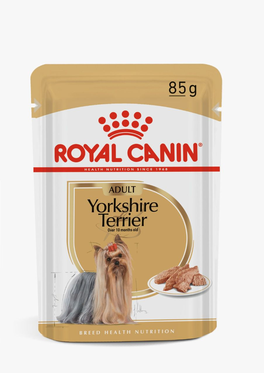 Ração Úmida Royal Canin Sachê Breed Health Nutrition Yorkshire Terrier para Cães Adultos - 85g