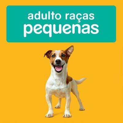 Ração Seca Pedigree para Cães Adultos Raças Pequenas