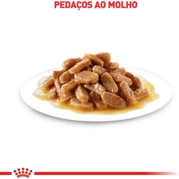 Ração Úmida Royal Canin Sachê Size Health Nutrition Wet Puppy Maxi para Cães Filhotes de Raças Grandes - 140 g