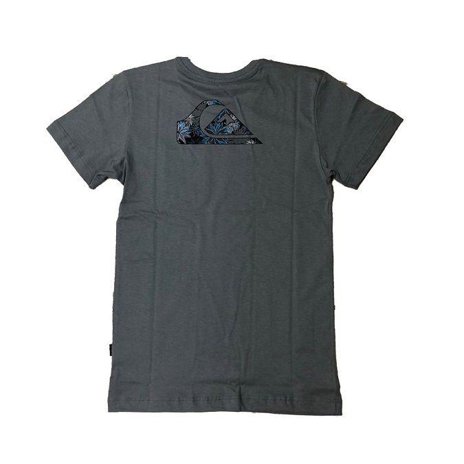 Camiseta Quiksilver Rail Drop Juvenil