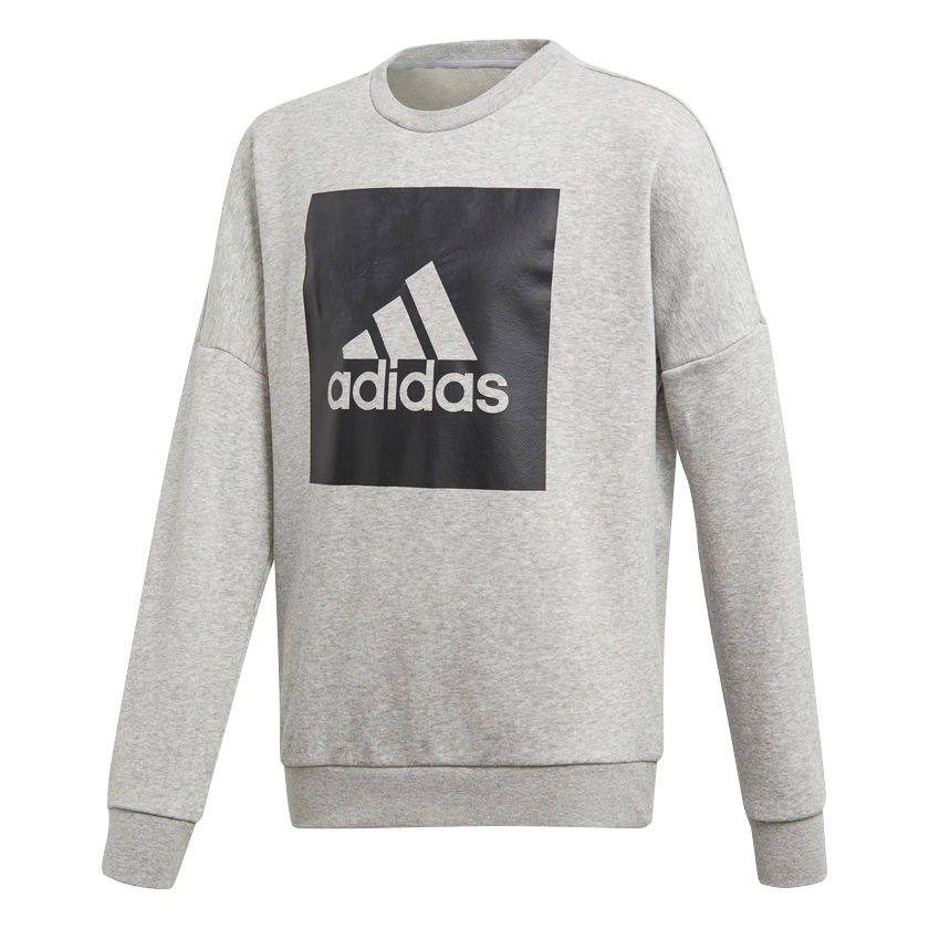 Moletom Adidas Essentials Big Logo Juvenil