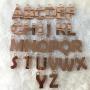 Pingente de Chaveiro Letra 01 em Acrílico Espelhado - 3,7CM (Letra Quadrada)- 5 Unidades