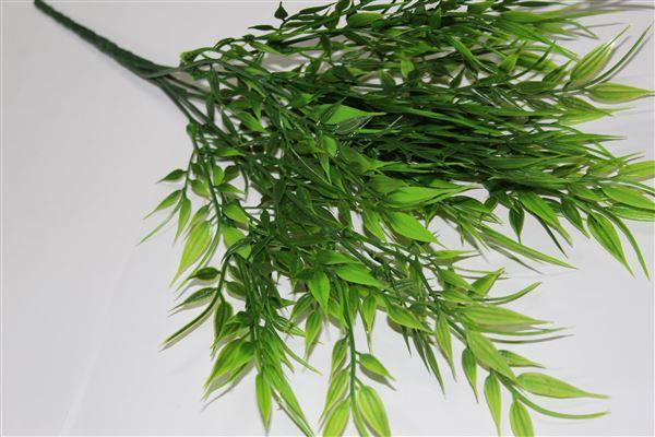 Bambu (5Y07030)