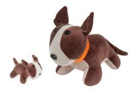 Bull Terrier Grávida com Filhote