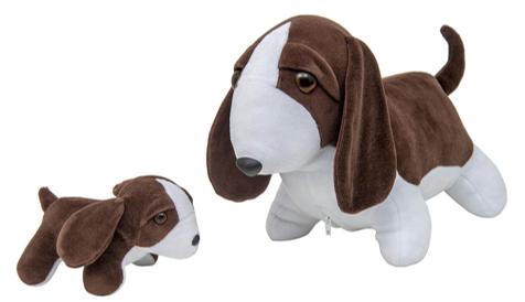 Beagle Grávida