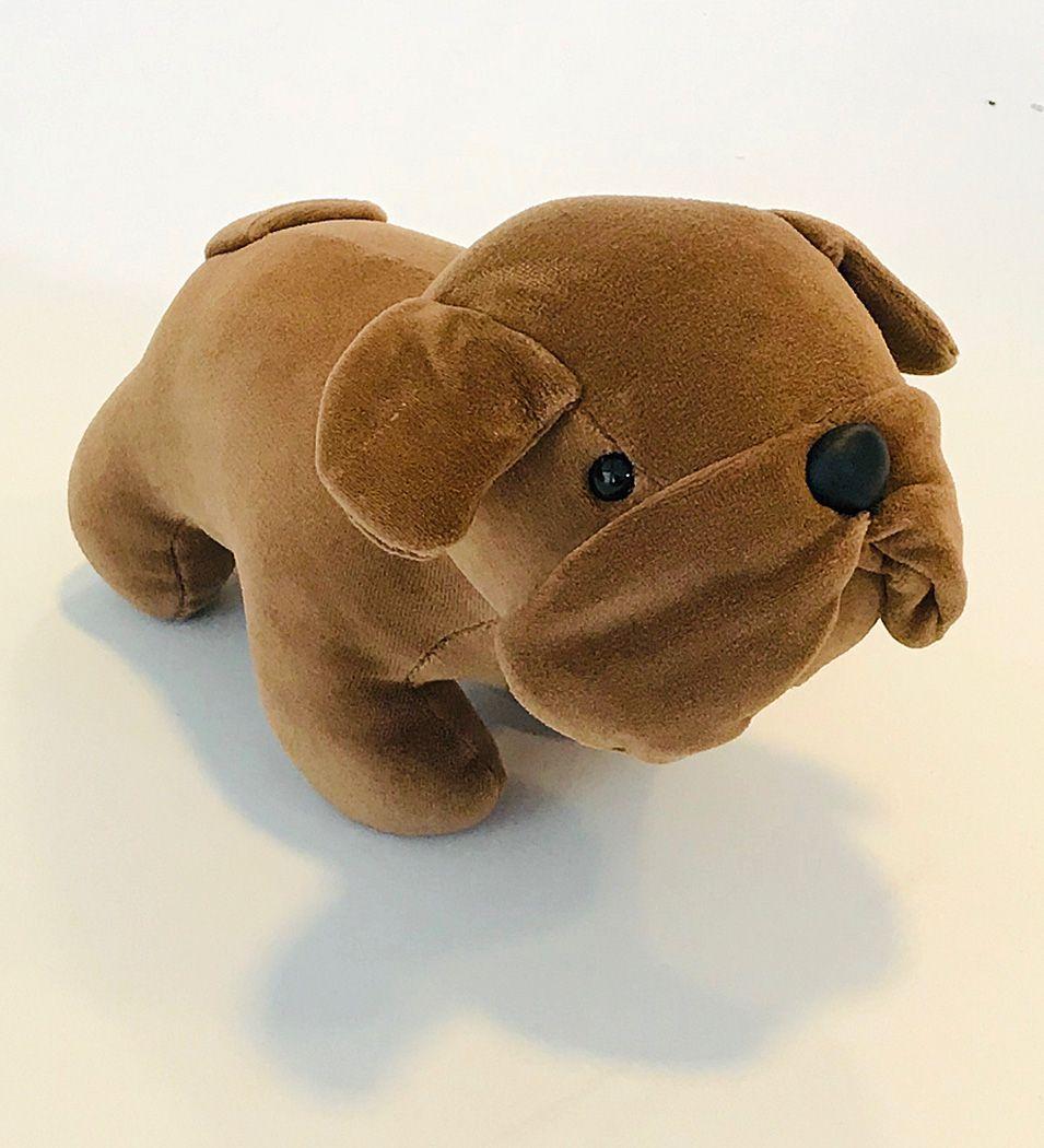 Bulldog Grávida