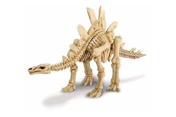 Kit de Escavação de Esqueleto - Estegossauro