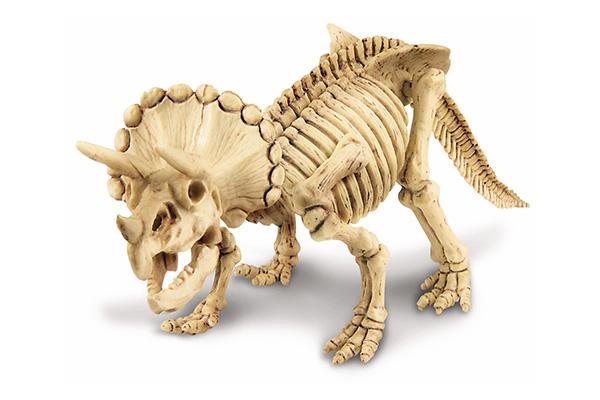 Kit de Escavação de Esqueleto - Tricerátops