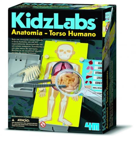 kit Torso Humano