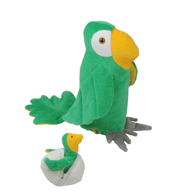 Papagaio Grávida