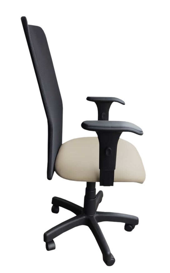 Cadeira Presidente de Tela Praia