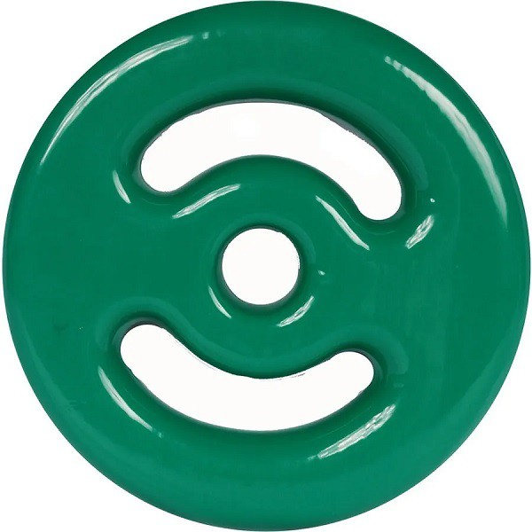 Anilha Emborrachada  1kg - Verde  - REAL ESPORTE