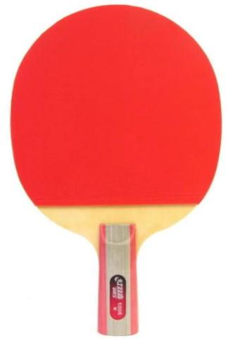 Raquete de tenis de Mesa Dhs 1006 + Raqueteira  - REAL ESPORTE