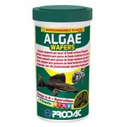 Ração Prodac Alage Wafer 125g - Herbívoros de Fundo