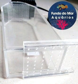 Reator Fluidiziado Biopellets Pequeno Com Bomba 110v/220v